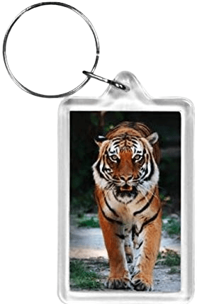 Example of a clear plastic rectangle keyring with a photo of a tiger printed on the paper insert.