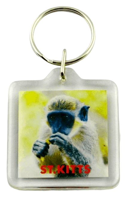 This is a square plastic keyring with a photo of a gorilla inserted inside.