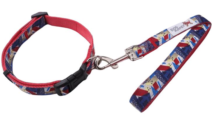 Custom dog leash with a high resolution logo.