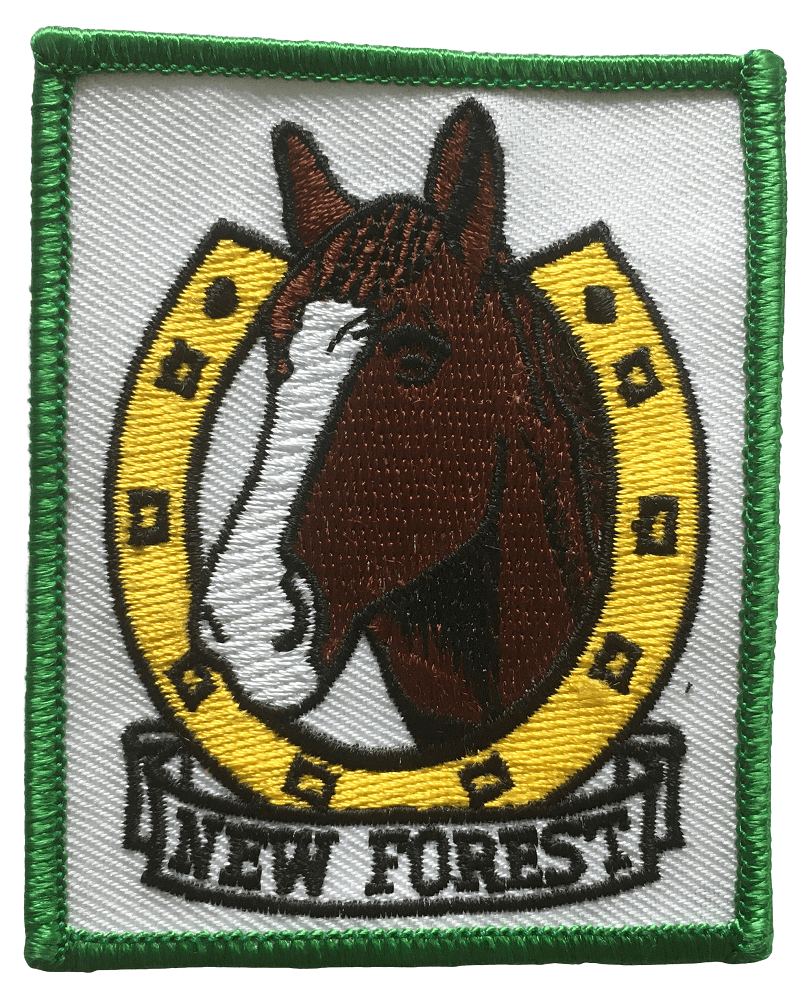 Embroidered patch for a horse riding club. There are multiple stitch colours for the horse image, horse shoe and New Forest wording at the bottom of the design.